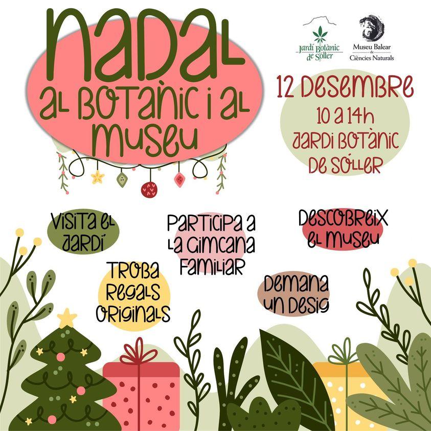 Nadal al Botànic i al Museu