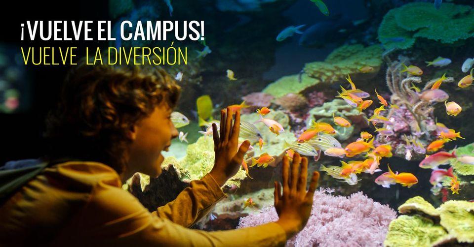 Campus de Palma Aquarium